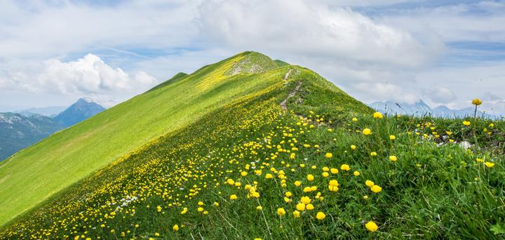 The ridge of a grass-covered hill with mountains in the background